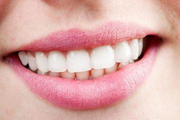 Сколько раз меняются зубы у человека — Зубы