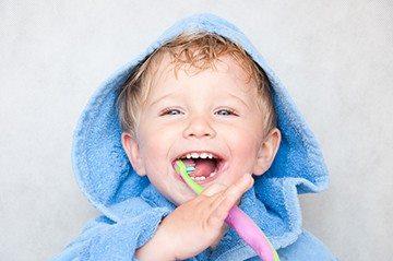 зачатки зубов